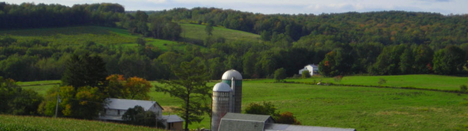 Farm in Cattaraugus County, Western New York